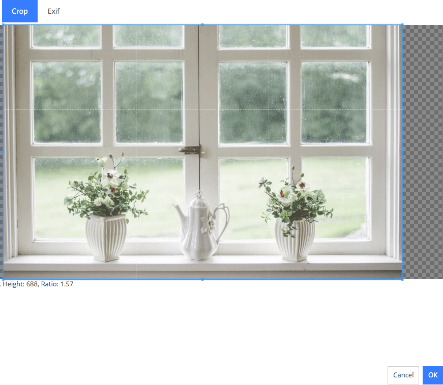 Adding photos and optimizing